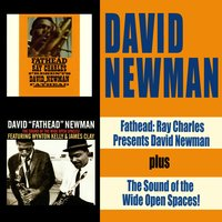 Fathead: Ray Charles Presents David Newman + the Sound of the Wide Open Spaces!!!! — David Newman