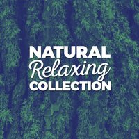 Natural Relaxing Collection — Sleep Sound Library