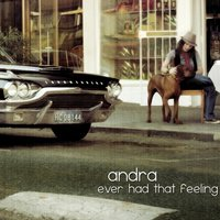Ever Had That Feeling — Andra