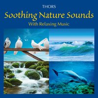 Soothing Nature Sounds with Relaxing Music — Thors