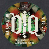 All Junglist — DJ Q