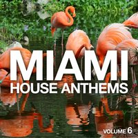 Miami House Anthems, Vol. 6 — сборник