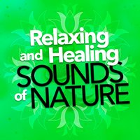 Relaxing and Healing Sounds of Nature — Relaxing and Healing Sounds of Nature
