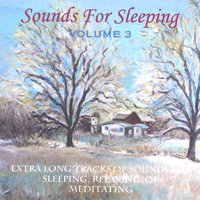 Sounds For Sleeping Volume 3 — Perry Rotwein