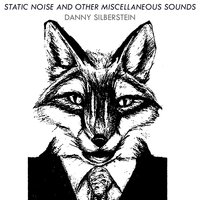 Static Noise and Other Miscellaneous Sounds — Danny Silberstein