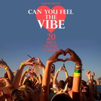 Can You Feel the Vibe (20 Ibiza House Classics) — сборник