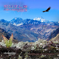 Chile Psytrance Vol.2 Compiled by Ovnimoon — сборник