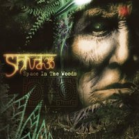 Space In The Woods — Shiva3