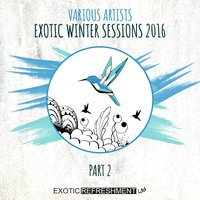 Exotic Winter Sessions 2016, Pt. 2 — сборник