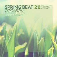 Spring Beat Occasion [20 Deep-House Smoothies], Vol. 2 — сборник