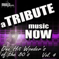 A Tribute Music Now: One Hit Wonder's of the 80's, Vol. 4 — The Tribute Beat