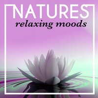 Nature's Relaxing Moods — Relaxing With Sounds of Nature and Spa Music Natural White Noise Sound Therapy, Sounds of Nature for Deep Sleep and Relaxation, Nature's Mystic Moods, Sounds of Nature for Deep Sleep and Relaxation|Nature's Mystic Moods|Relaxing With Sounds of Nature and Spa Music Natural White Noise Sound Therapy