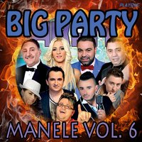 Big Party Manele, Vol. 6 — сборник
