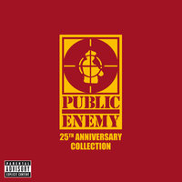 25th Anniversary Collection — Public Enemy