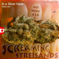 In a Silver Haze — Screaming Steisands