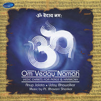 Om Veday Namah - Vedic Chants for Peace — Anup Jalota, Bhavani Shankar, Uday Bhawalkar