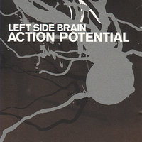 Action Potential — Left Side Brain