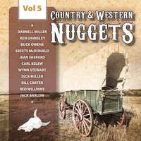 Country & Western Nuggets, Vol. 5 — сборник