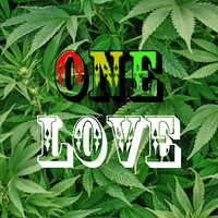 One Love — The 2 Step Massive Crew