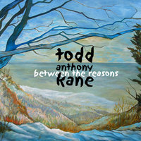 Between The Reasons — Todd Anthony Kane