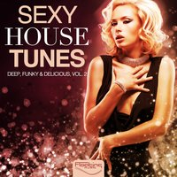 Sexy House Tunes - Deep, Funky & Delicious, Vol. 2 — сборник