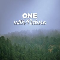 One with Nature — Nature Ambience