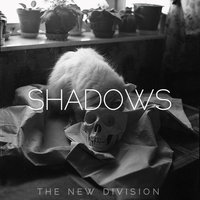 Shadows — The New Division