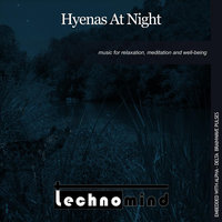 Hyenas At Night — Technomind