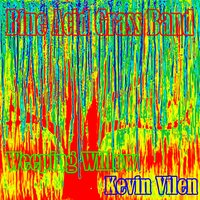 Weeping Willow — Blue Acid Grass Band & Kevin Vilen