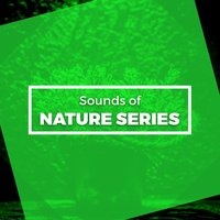 Sounds of Nature Series — Nature Sound Series