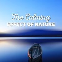 The Calming Effect of Nature — Nature Sound Collection