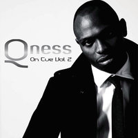 On The Cue Vol. 2 — DJ Qness