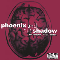 Different They Think — Phoenix & The Shadow