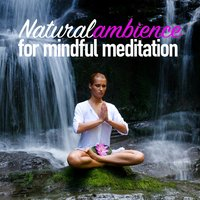 Natural Ambience for Mindful Meditation — Sounds of Nature White Noise for Mindfulness, Meditation and Relaxation