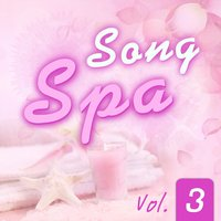 Song Spa, Vol. 3 — D-Music