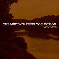 The Muddy Waters Collection Vol. 3 — Muddy Waters