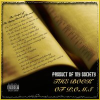 The Book of P.O.M.S — Product of My Society