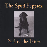 Pick of the Litter — The Spud Puppies