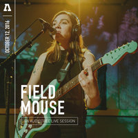 Field Mouse on Audiotree Live — Field Mouse