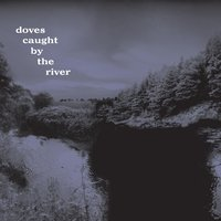 Caught By The River — Doves