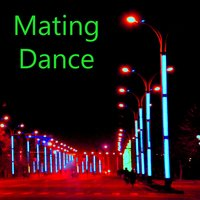 Mating Dance — Joan Barry