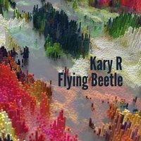 Flying Beetle — Kary R