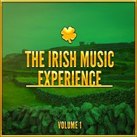 The Irish Music Experience, Vol. 1 (A Selection of Traditional Music from Ireland) — Irish Celtic Songs