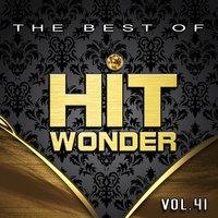 Hit Wonder: The Best Of, Vol. 41 — сборник