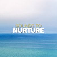 Sounds to Nurture — Sounds of Nature!