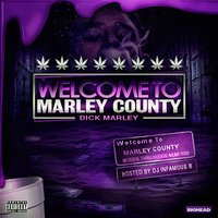 Welcome to Marley County — Dick Marley