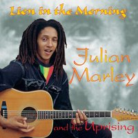 Lion In The Morning — Julian Marley