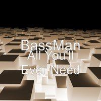 All You'll Ever Need — Bassman