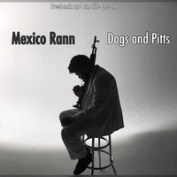 Dogs and Pitts — Mexico Rann