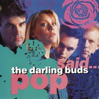 Pop Said — The Darling Buds